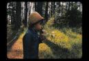 Verdescente - Uxía Lambona e a Banda Molona