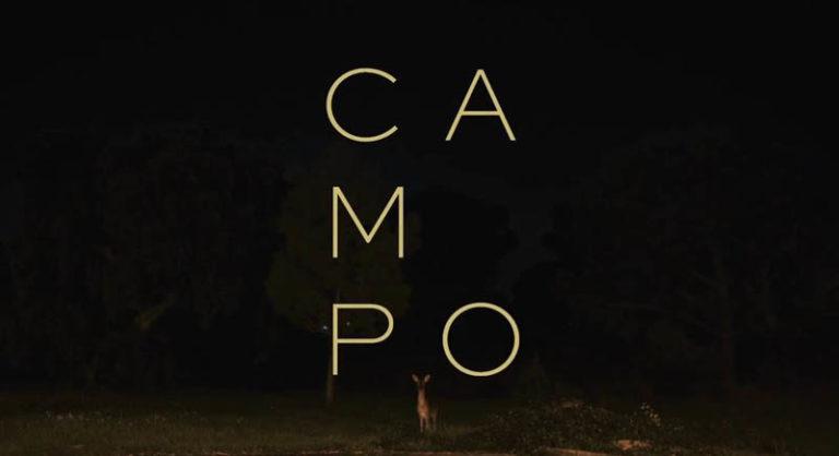 Campo - Thiago Hespanha